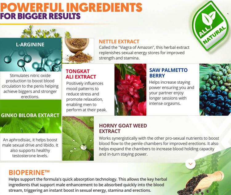 vixea Ingredients