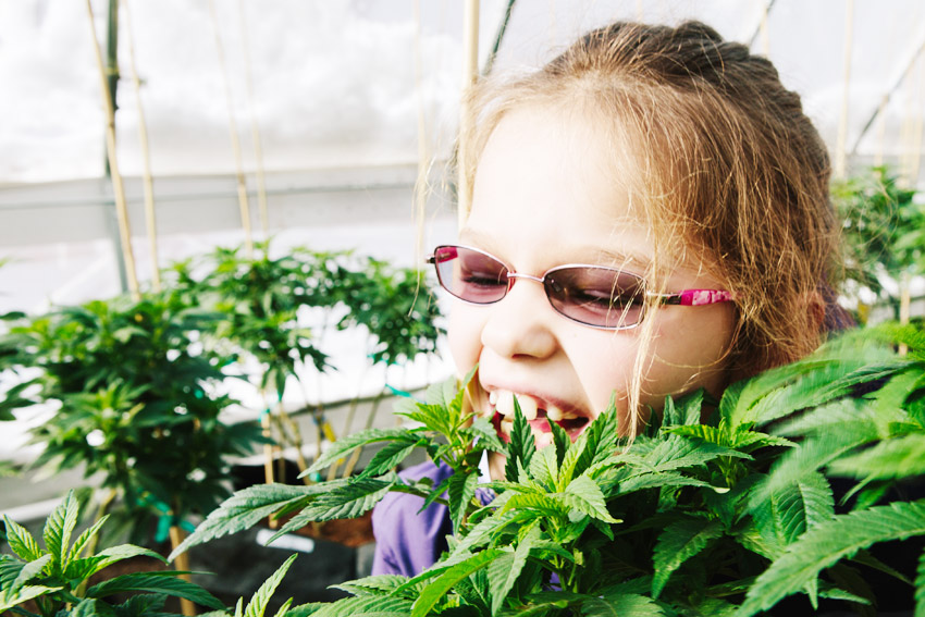 cbd for kids